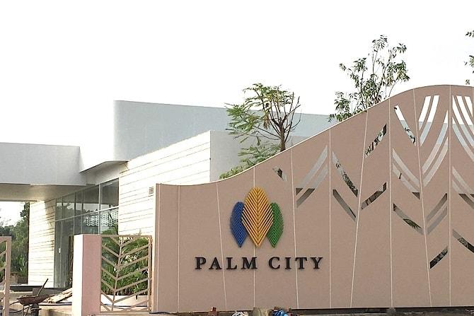 phối cảnh palm city